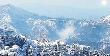 chail tour package by tempo traveller