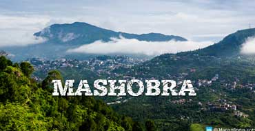 mashobra tour package by tempo traveller